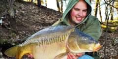 carp-valley-schiegelkarper-vissen-in-nederland-visvakantie